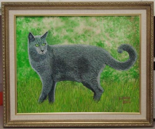 Armand cat 6